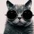 Аватар для tinka10_03